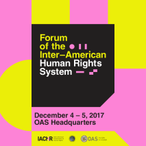 forum of the inter-american human rights system
