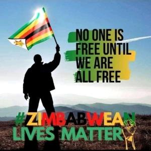 Zimbabwelivesmatter